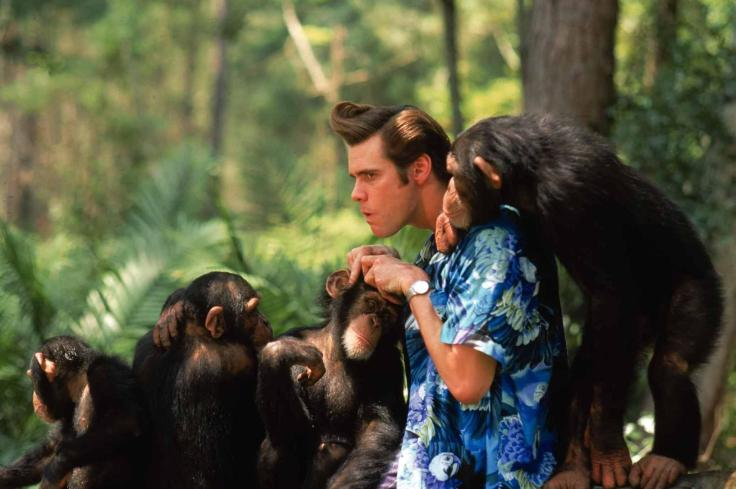 ace-ventura_-when-nature-calls-1995-large-picture