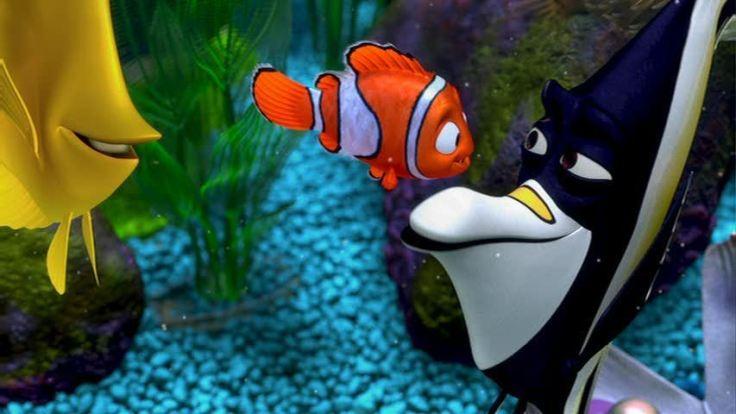 Finding-Nemo-finding-nemo-3567894-853-480