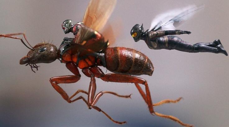 ant-man-wasp-900x599